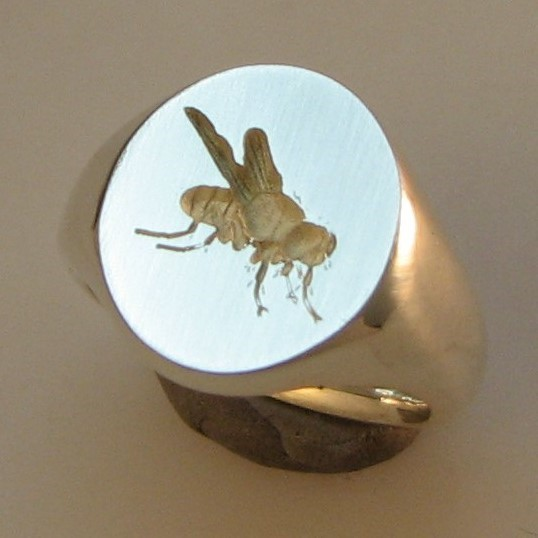 fly insect crest engraved signet ring